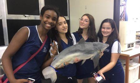 O 7º ano visitou o Acervo Zoológico da Universidade Santa Cecília